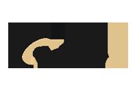 Tapeso logo